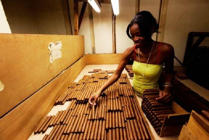 Կուբայական սիգարների վաճառքներն աճել են մինչեւ կես միլիարդ դոլար
