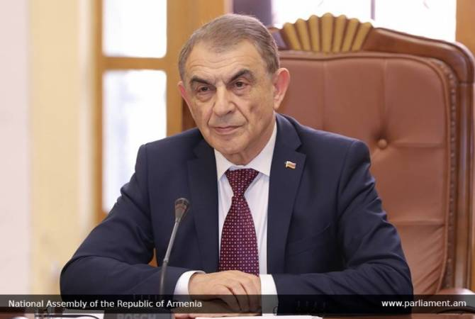 """I believe in wisdom of our people"" – Speaker of Parliament issues statement on ongoing 