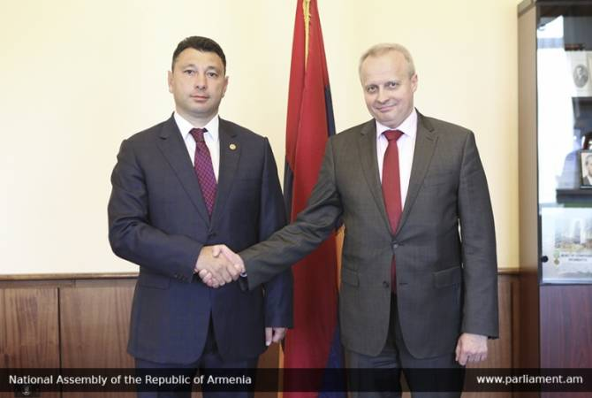 Vice Speaker of Armenian Parliament holds meeting with Russian Ambassador
