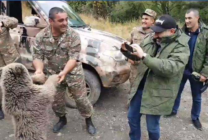 В Арцахе два медвежонка перекрыли путь машины премьер-министра Армении Никола Пашиняна