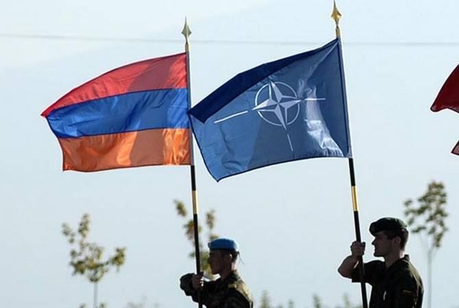 Перспектива сильной Армении исходит из интересов альянса: представитель НАТО