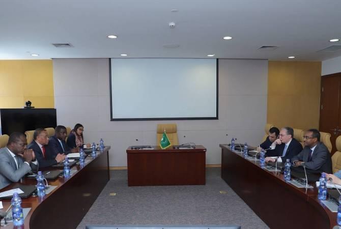 Глава МИД Армении представил комиссару Африканского союза по экономическим вопросам широкую повестку реформ правительства Армении