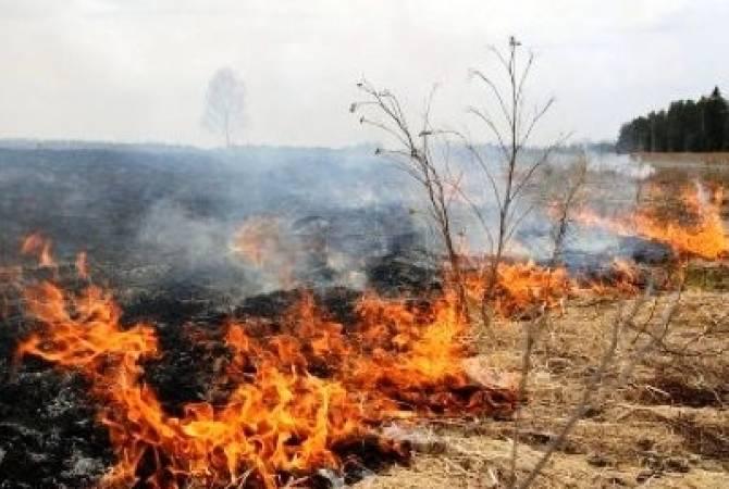 Зарегистрировано 29 пожаров на травяных участках