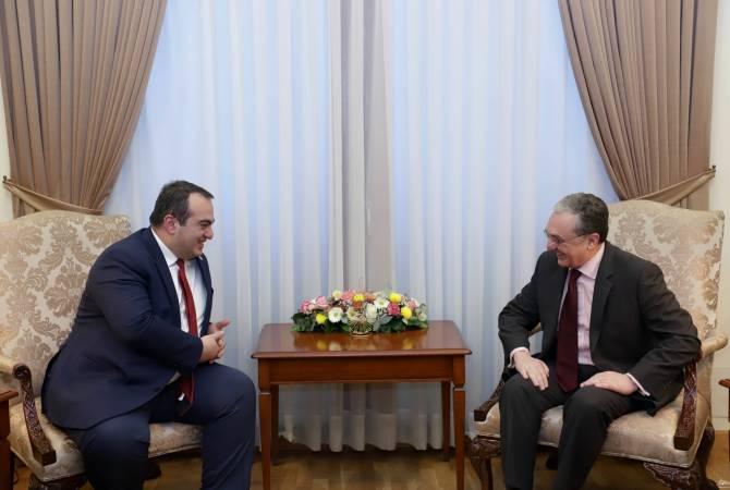 Мнацаканян положительно оценено эффективное и тесное сотрудничество между МИД Армении и Грузии