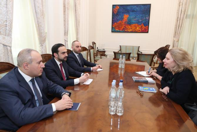 Armenia, CoE discuss cybersecurity, AI in human rights protection