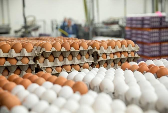 Председатель ГКЗЭК опроверг сведения об импорте в Армению яиц