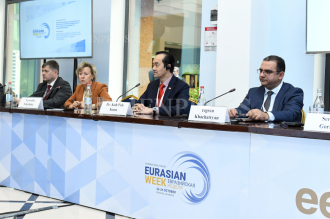 Panel debate: EAEU foreign economic activity as a source of 