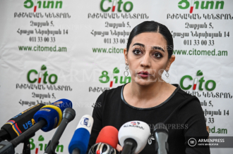Press conference of pediatrician Mari Darakchyan