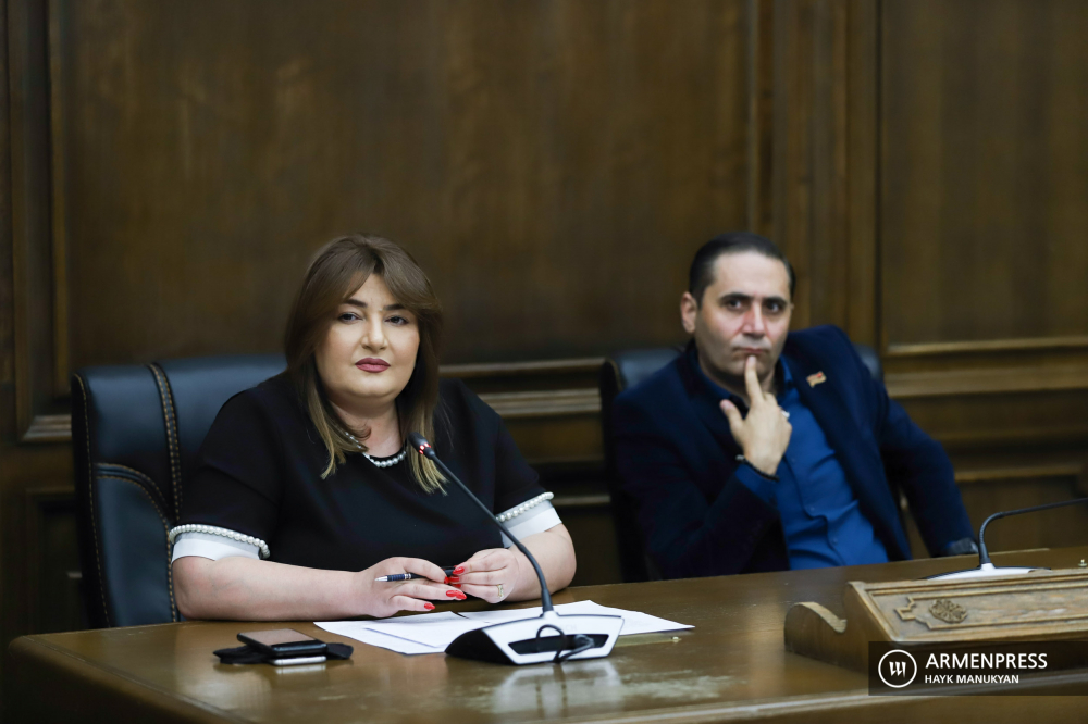 Parliamentary briefings - Prosperous Armenia